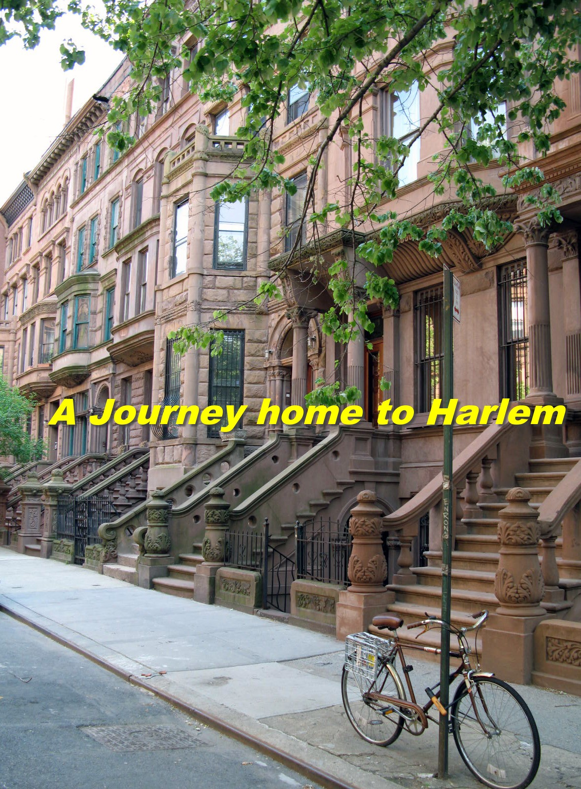 A Journey Home to Harlem